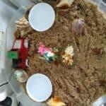 Hermit Crab life span